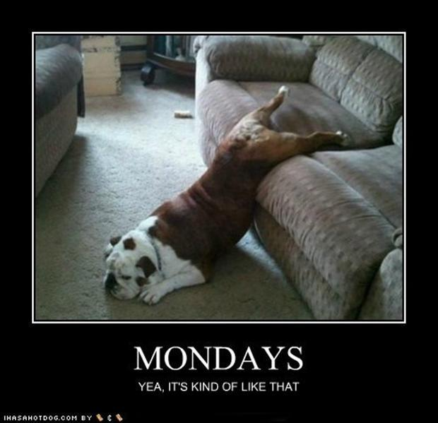 a mondays, demotivational posters
