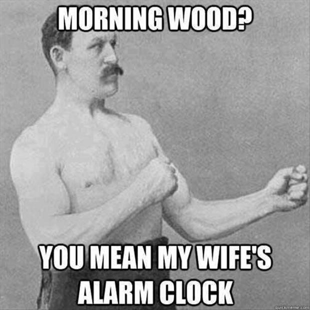 a morning wood funny pictures