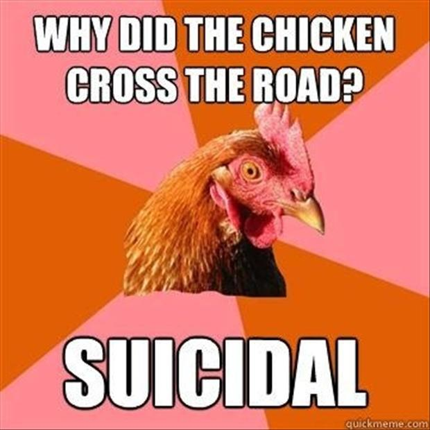 anti joke chicken meme, dumpaday (16)