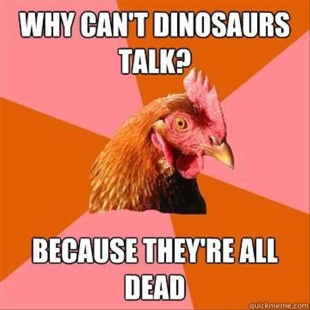 anti joke chicken meme, dumpaday (5)