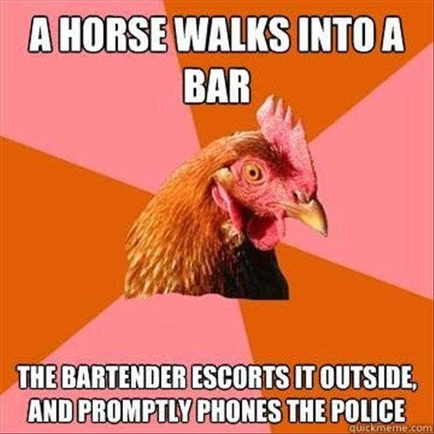 anti joke chicken meme, dumpaday (6)