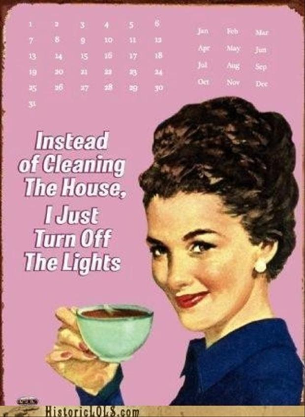 clean the house, funny pictures