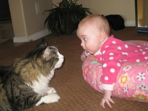 cutest baby sitter ever (14)