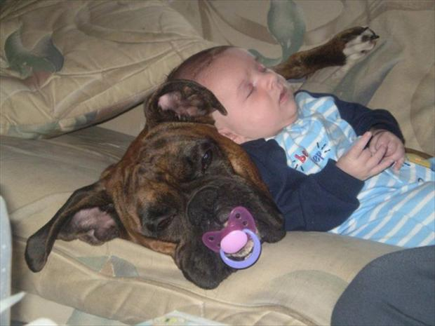 cutest baby sitter ever (16)