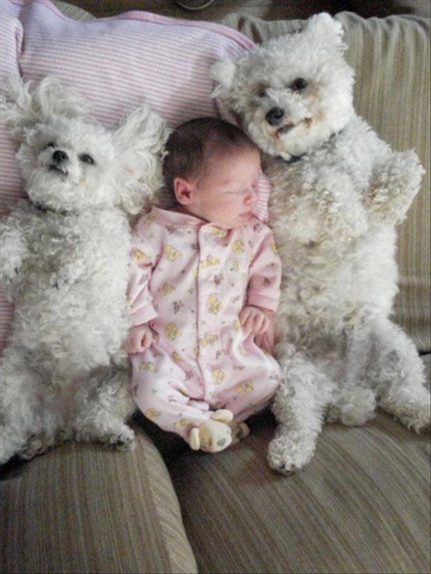cutest baby sitter ever (3)