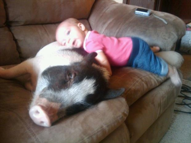 cutest baby sitter ever (9)