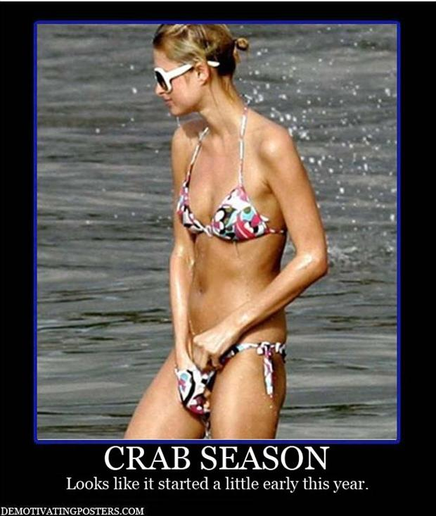 demotivational posters, bikini season
