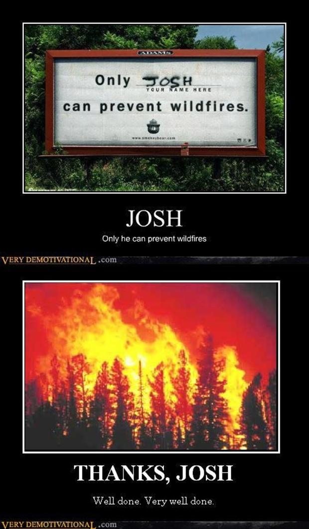 demotivational posters, forrest fires