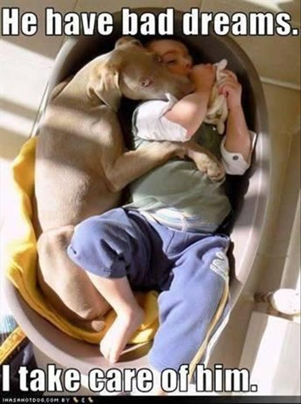 dog sleeping with a baby, cute pictures
