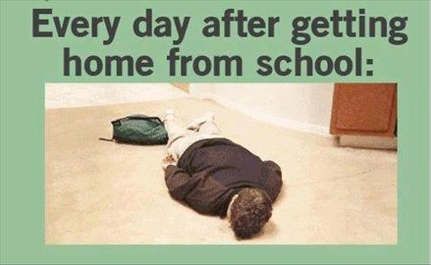 everyday after getting home from school