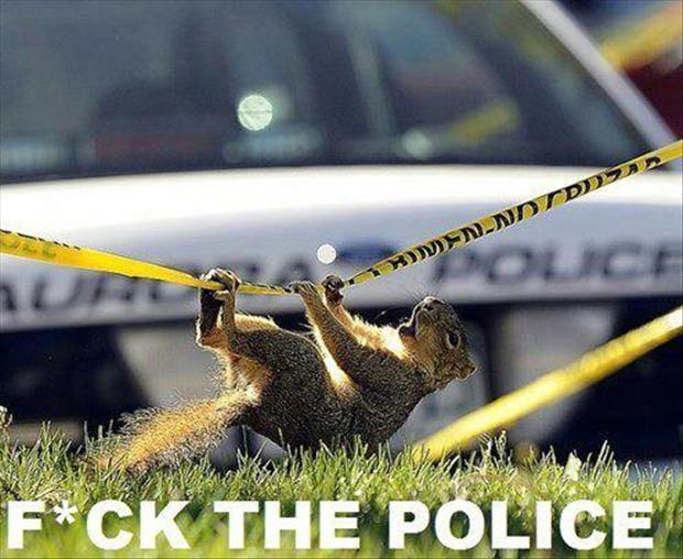 f the police funny pictures