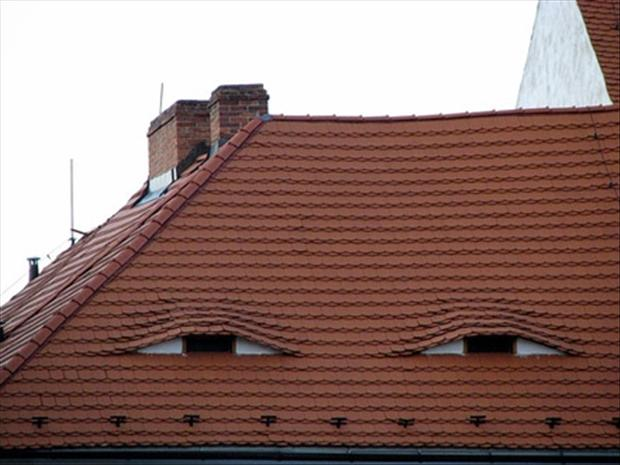 faces in places are watching you funny pictures (3)