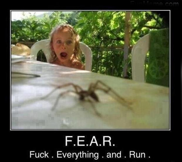 funny fear,