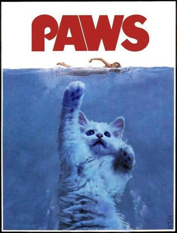 funny jaws posters