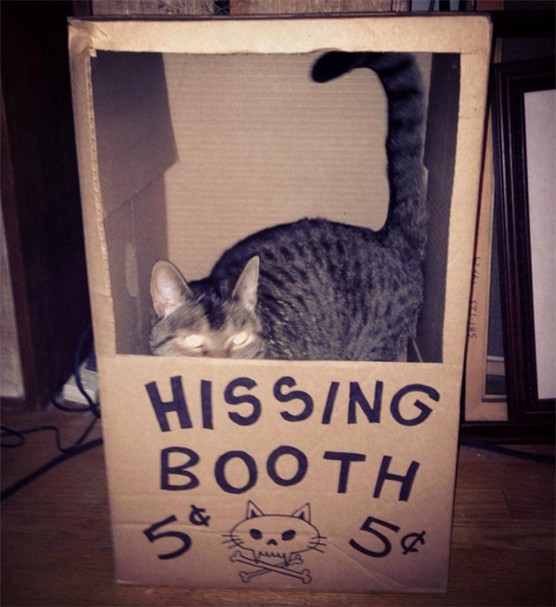 funny kissing booths