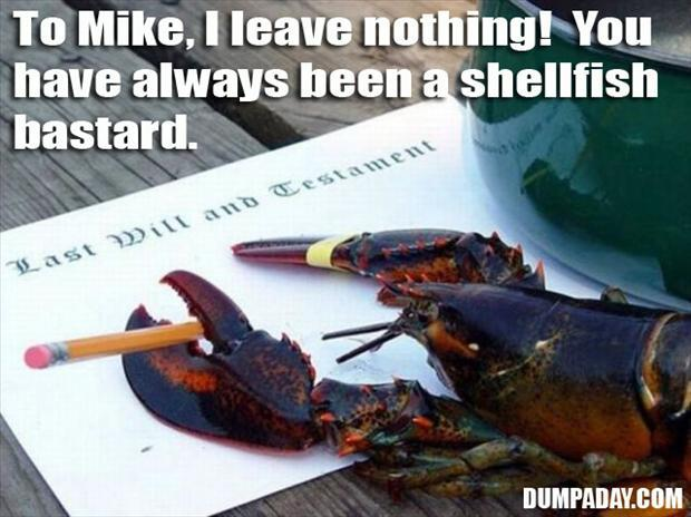 funny pictures (812)