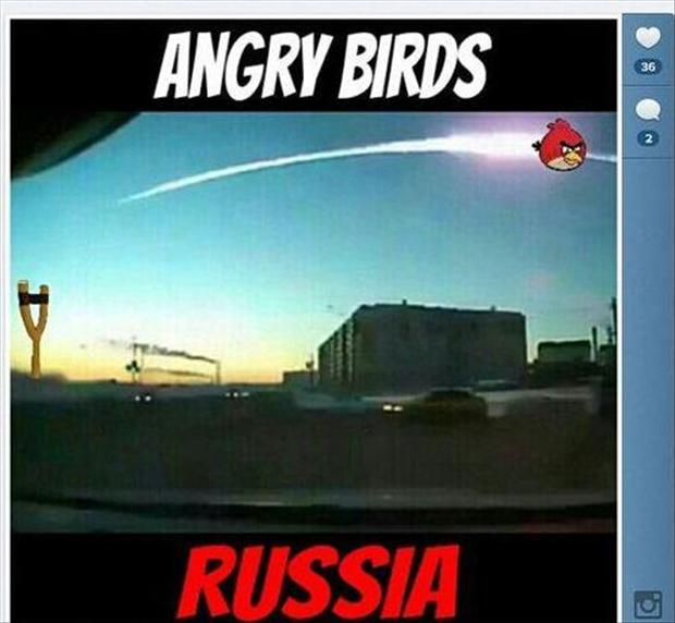 funny pictures angry birds