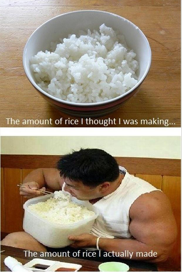 funny pictures, rice