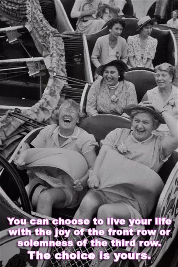 funny pictures, roller coasters