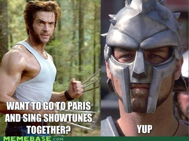 funny pictures, wolverine