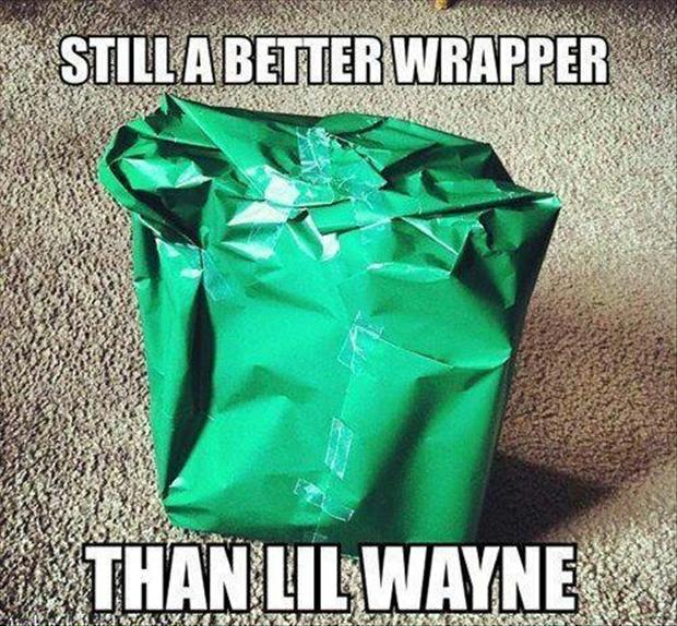 funny pictures, wrapping a present