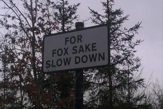 funny signs (22)
