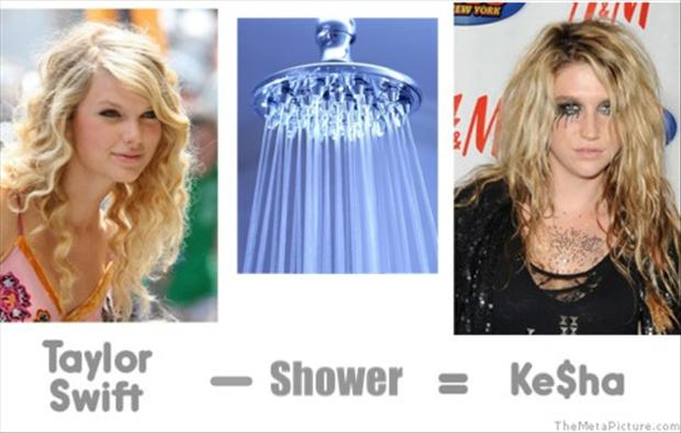 funny taylor swift pictures (2)