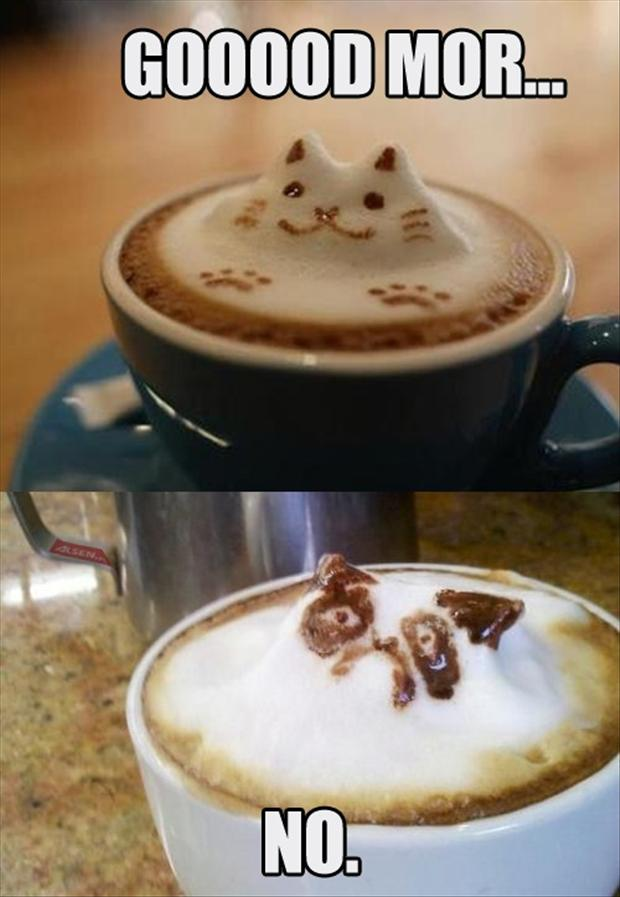 grumpy cat morning cup of coffee