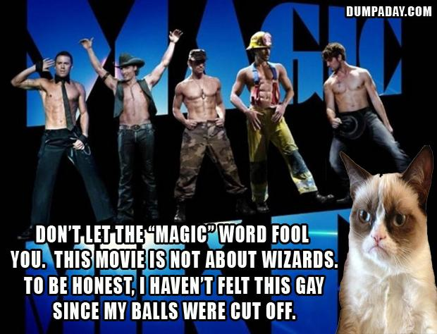 grumpy cat movie reviews, magic mike