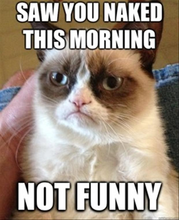 grumpy cat saw you naked