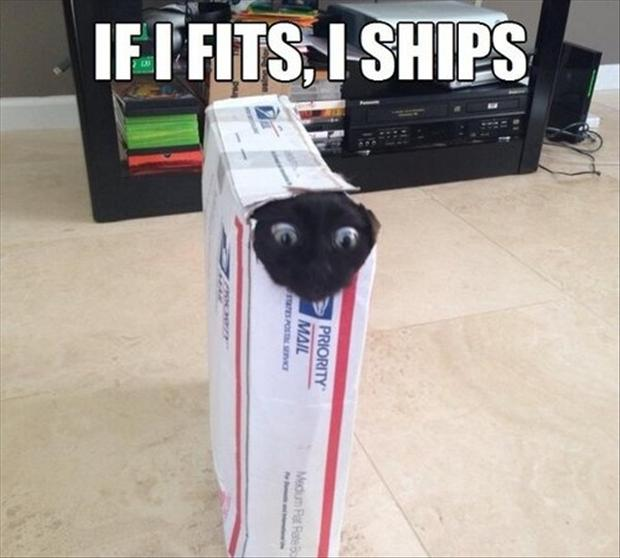 if it fits it ships, funny pictures
