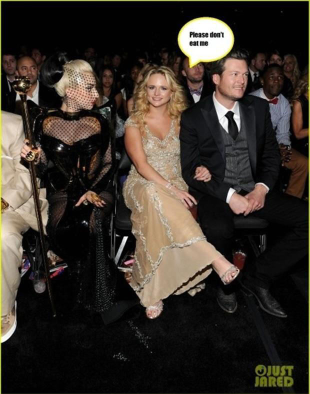 lady gaga, funny pictures