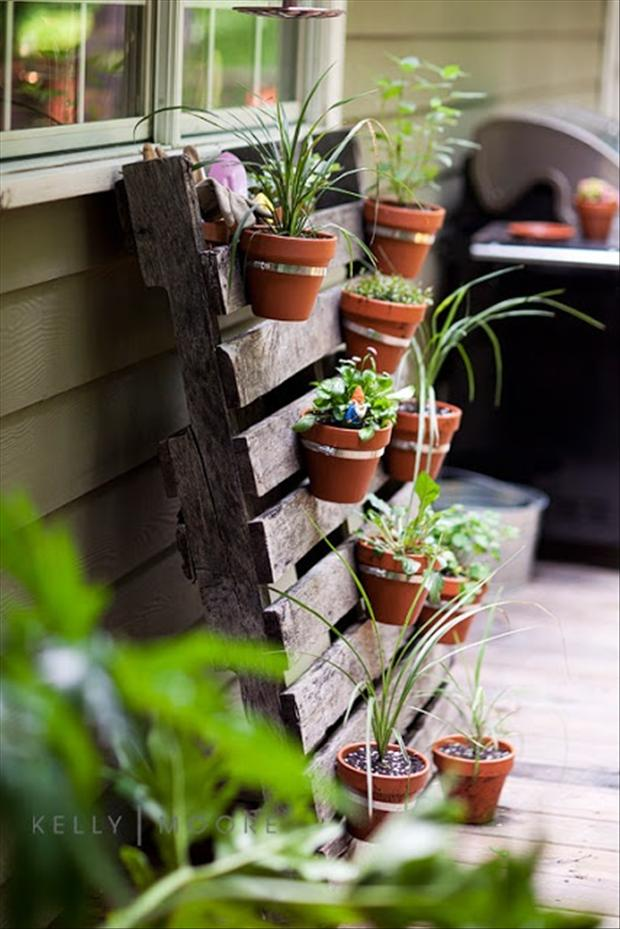 old pallets to hold flower pots