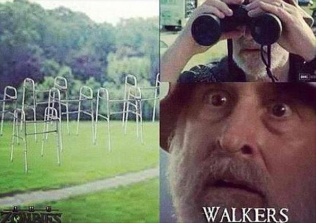 the walking dead funny pictures