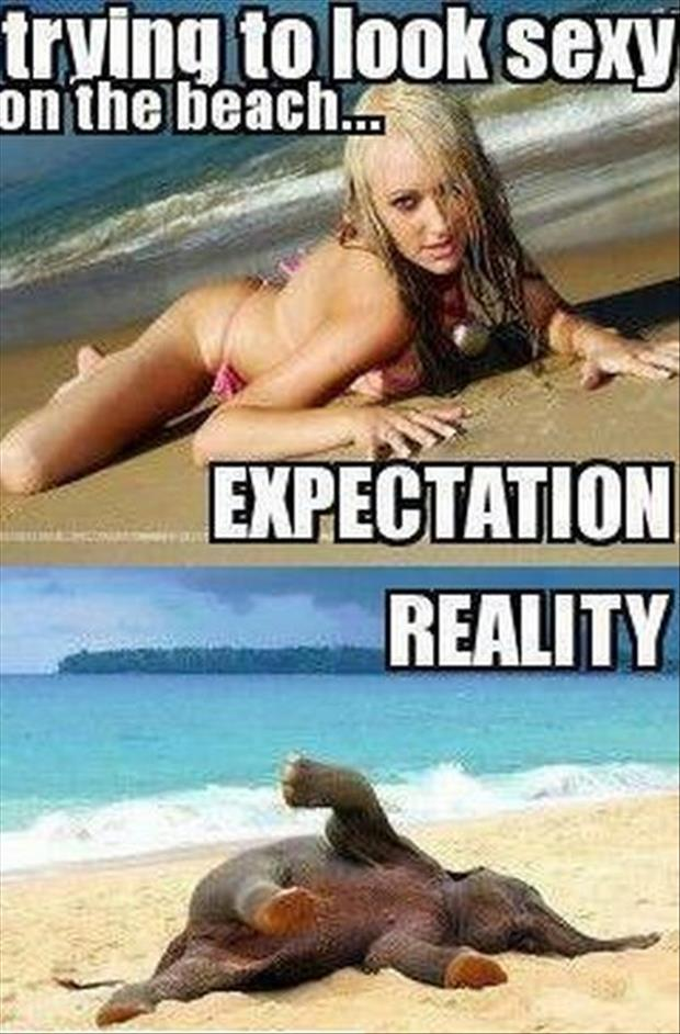 Best of Expectation Vs Reality Pictures-trying to look sexy