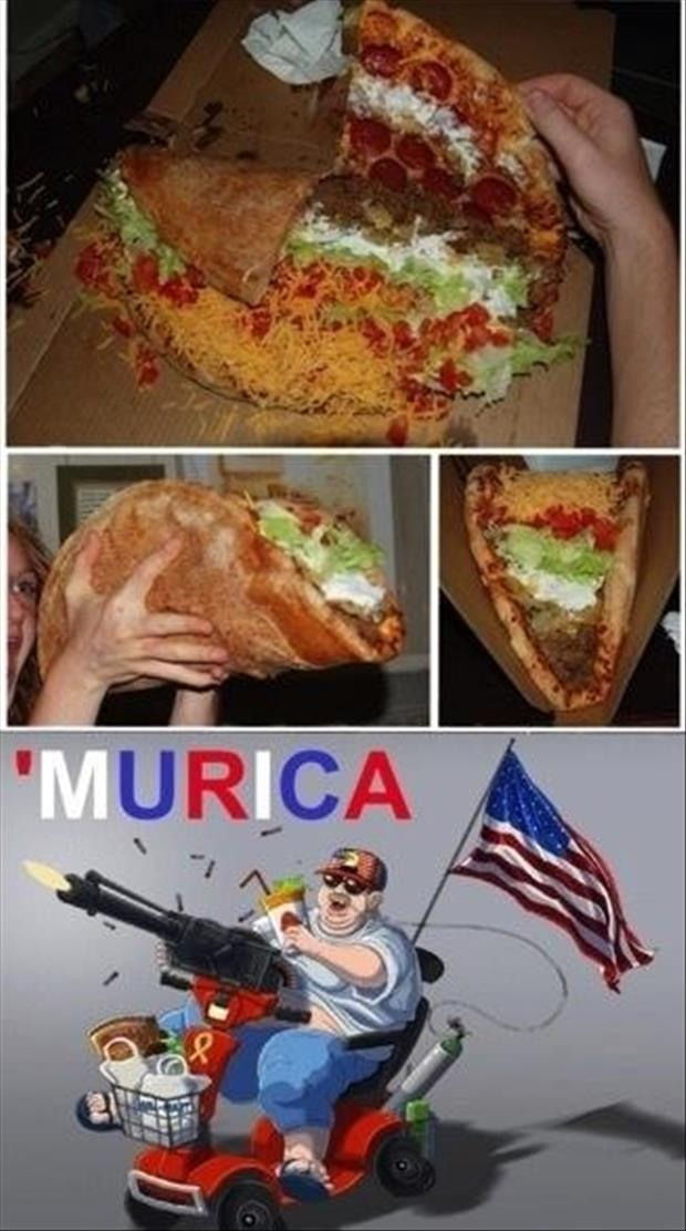 Funny Murica Pictures-pizza taco