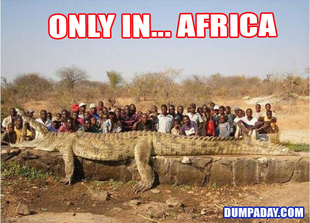 Funny Only In Pictures- Africa
