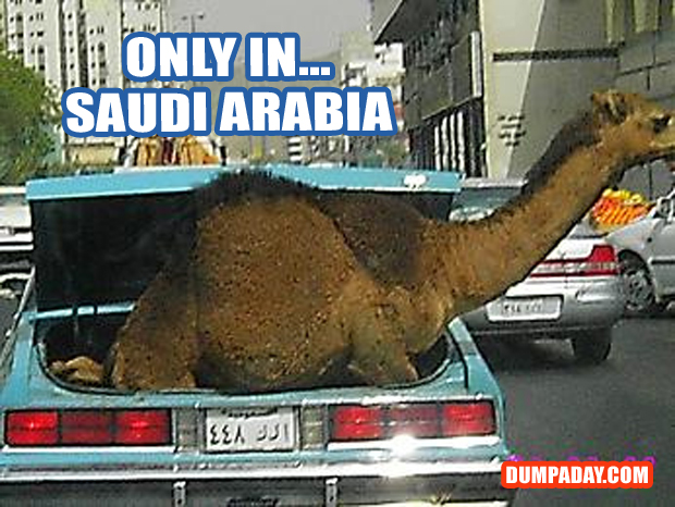 Funny Only In Pictures- Saudi Arabia
