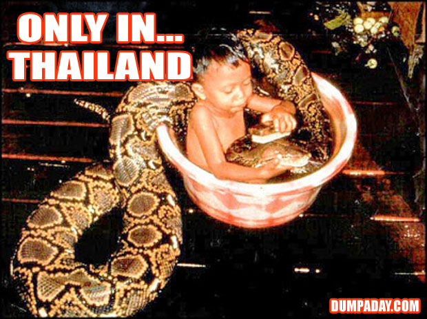 Funny Only In Pictures- Thailand