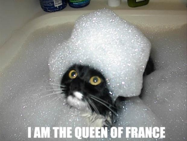 I am the queen of france