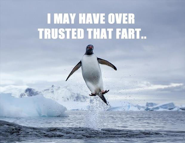 I may have over trusted that fart