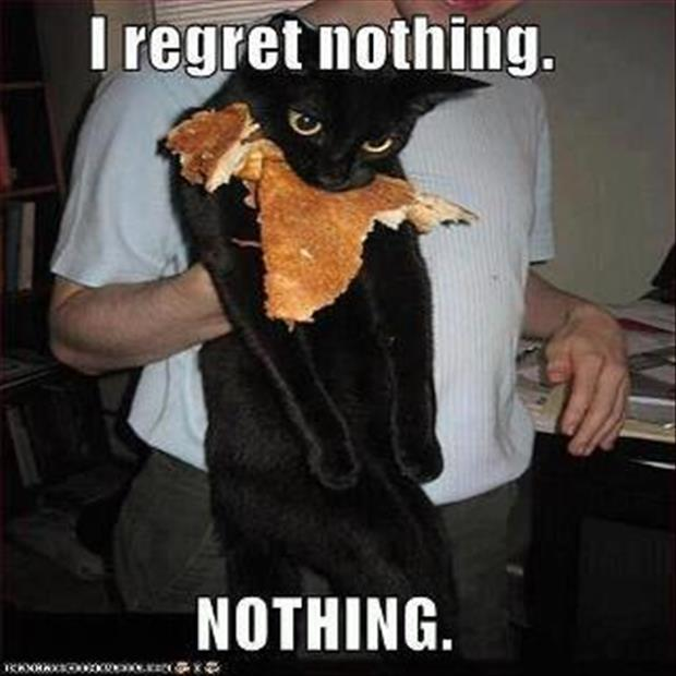 I regret nothing cat eating pancakes