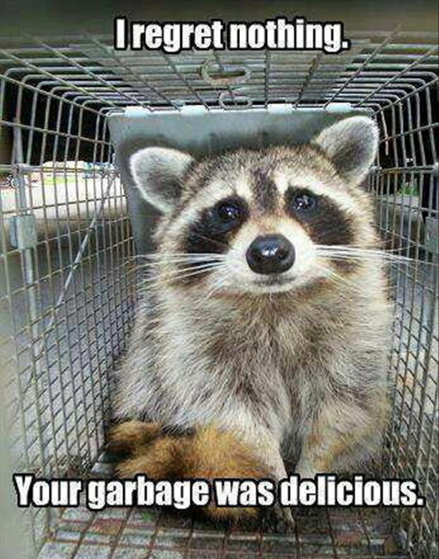 I regret nothing your garbage was delicious