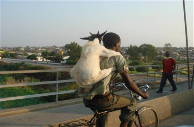 Man-With-Goat