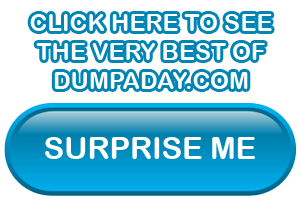 Sidebar surprise me button