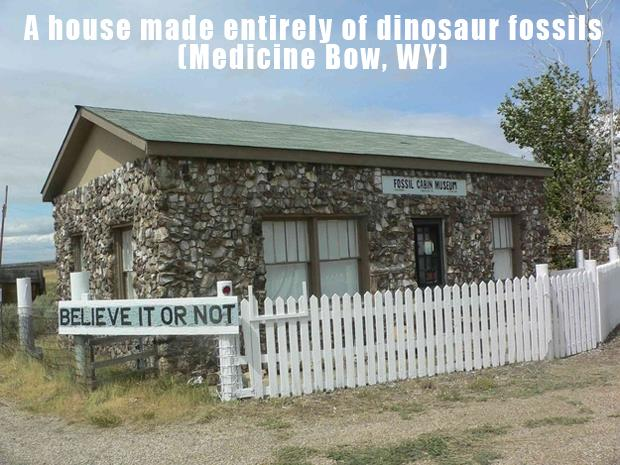 The Most Incredible Roadside Sights - Dinosaur Fossil House