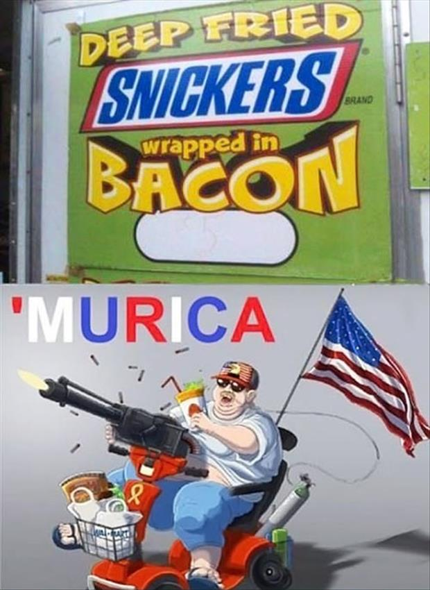 a Funny Murica Pictures-bacon wrapped murica