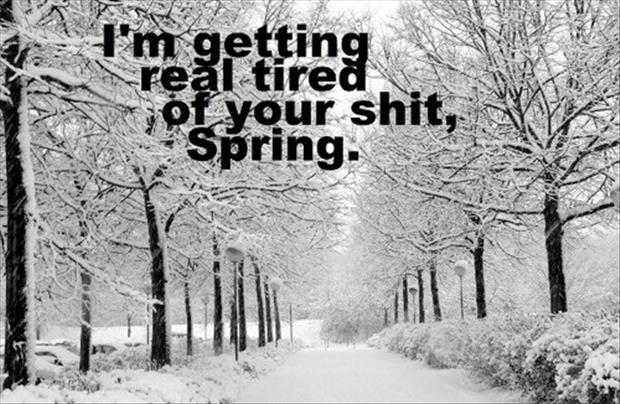 a I'm getting real tired of your shit spring weather