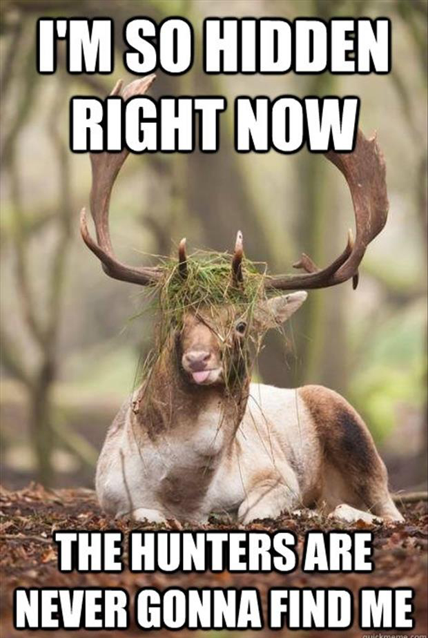 a funny deer hunting pictures