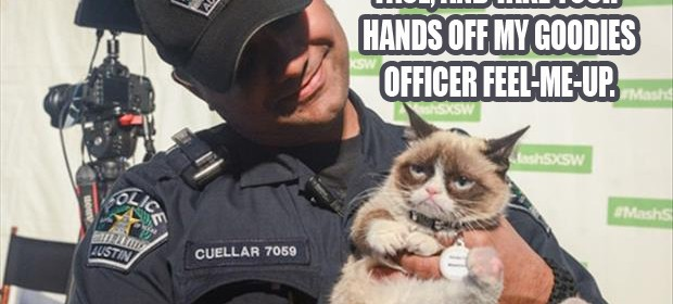 a grumpy cat is under arrest